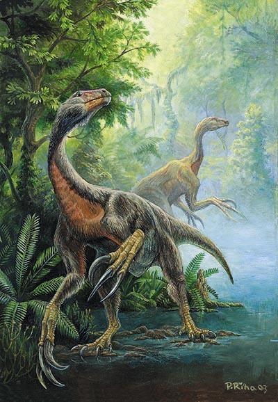 rozdíl mezi relativním datováním a absolutním datováním fosilií