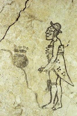 Mayske Ritualni Jeskyne Casopis Vesmir