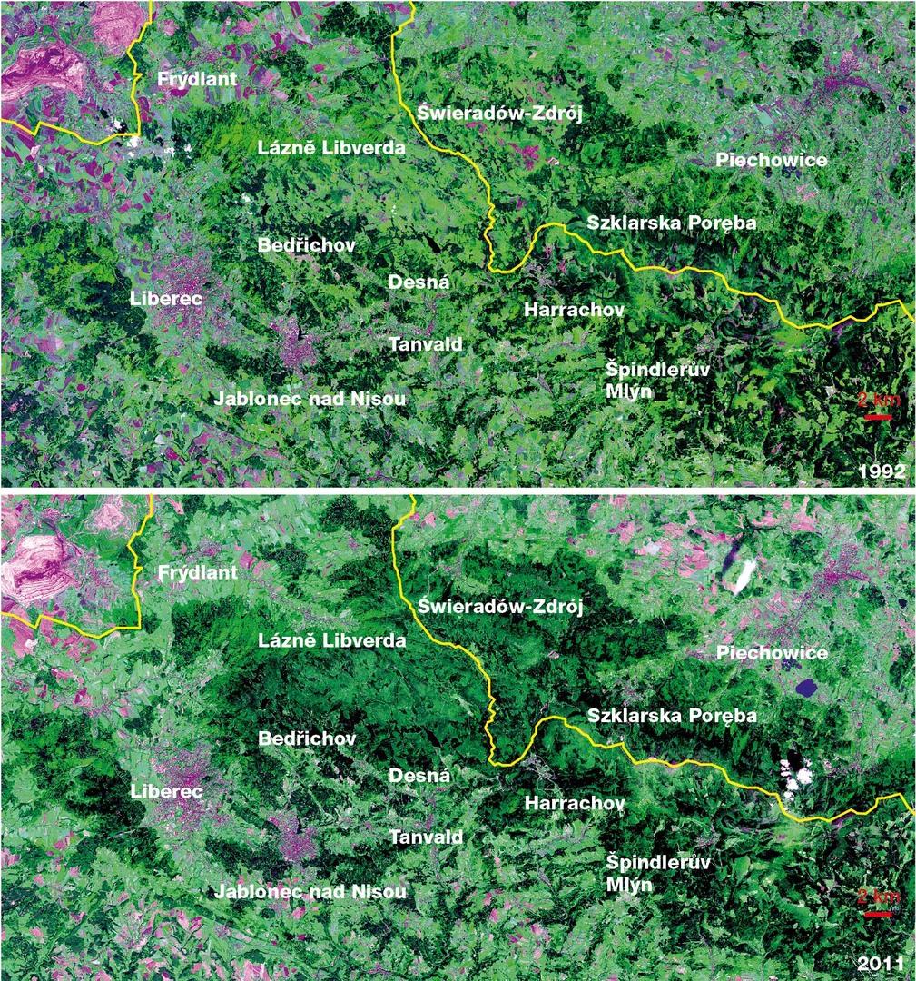 Obrázek 17: Obnova lesa v Jizerských horách po kyselých deštích mezi roky 1992 a 2011